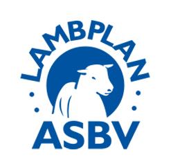 Lambplan stats availible