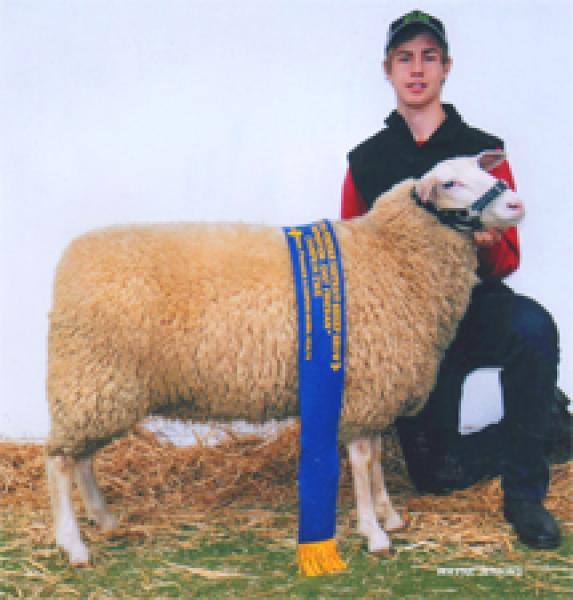 Brodhi with Champion ewe at 2013 Sheepvention and Bendigo ASBA.