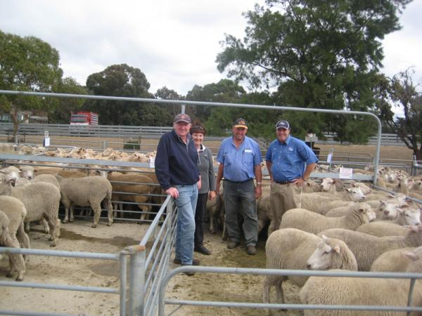 Corriedale Whether Lambs. $219 <br>at Mt Gambier Sale, March 2011.