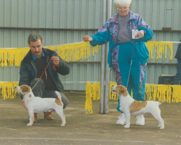 Hamilton National Show 1996 - Left: N Hoare with Bangalay Ranger, Best in Show. Right: M Baldock with Maroy Bootie Belle, Adult Bitch