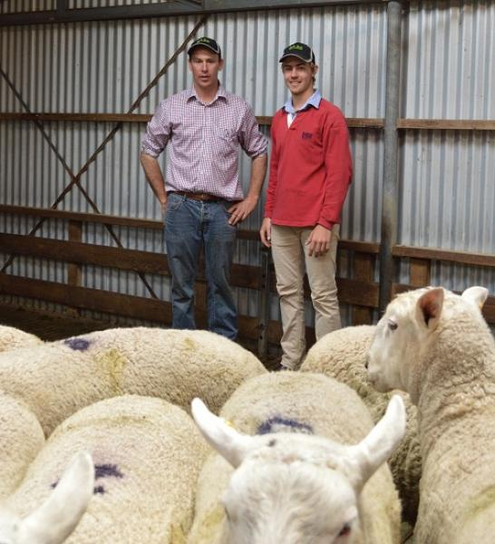 Rick and Brodhi after the 2014 sale where the EF/BL rams averaged $1834